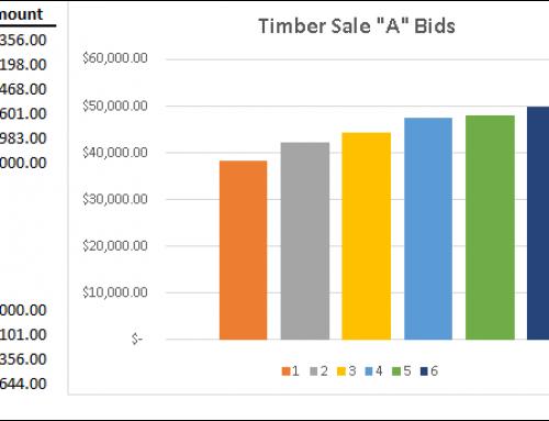 Despite a Weaker Timber Market, Bidding Still Brings the Best Results for Landowners